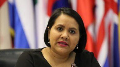 Diputada Cristina Cornejo