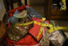 PNC ha capturado a más de 1,000 personas por narcotráfico en lo que va del año