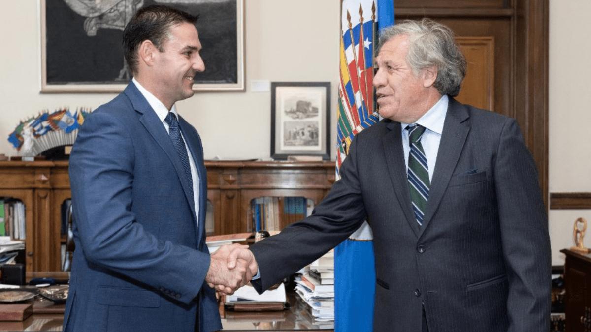 Ernesto Muyshondt asesor de la OEA