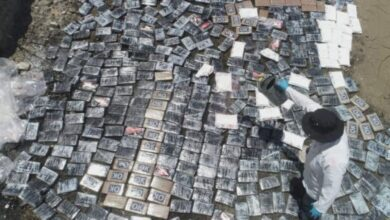 Mas de 700 kilos de cocaína incautados a través de operativos a escala nacional fueron destruidos este día