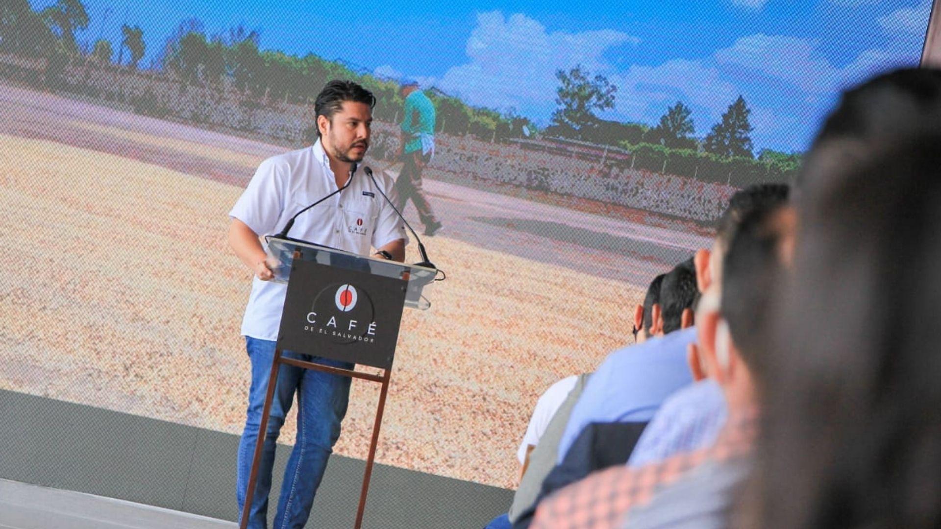 Café Salvadoreño posicionará al país como una potencia en la misma industria